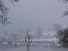 sous-la-neige-006