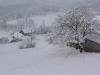 sous-la-neige-011