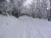sous-la-neige-017
