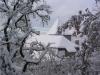 sous-la-neige-024