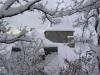 sous-la-neige-025