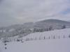 sous-la-neige-069