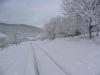 sous-la-neige-012