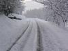 sous-la-neige-018