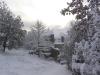 sous-la-neige-020