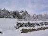 sous-la-neige-036