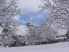 sous-la-neige-042
