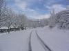 sous-la-neige-057