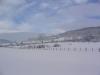 sous-la-neige-066