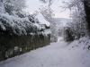 sous-la-neige-071
