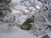 sous-la-neige-073