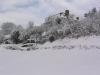 sous-la-neige-076